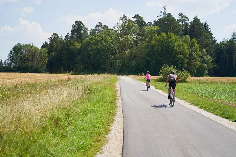Radfahren Radweg Waller Brauner Hirsch